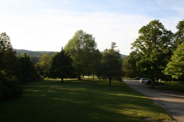 Summer Camp trees usa view